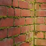 """bricks"" by Bryant-Photography"