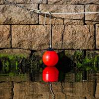 Buoy and its reflection