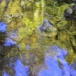 """""""stream of consciousness"""" by JulieScholz"""