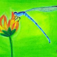 Damselfly Art Prints & Posters by Rae Hauck