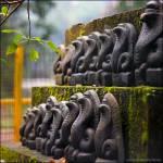 """""""Kukke Shri (Snake God!)"""" by Prashanthe"""