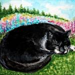 """Cat Nap in the Meadow"" by ElizaArt"