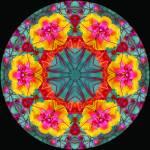 """Flowerberry Mandalla II"" by RaeH"