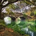 """Park Bridge"" by lonewolf565"