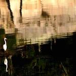 """Ocean Reflections"" by waynelogan"