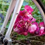 """""""Bespoke Flower Arrangement"""" by RonaBlack"""