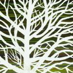 """""""white with green tree"""" by TCRAWFORD"""