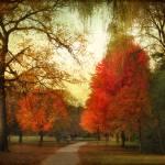 """Autumn Promenade"" by JessicaJenney"