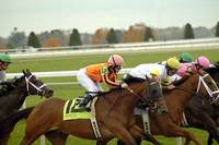 Thoroughbred Horse Racing  8384
