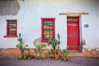 Cactus with red door and windows