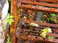 Rusted Ladder