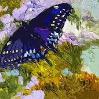 Abstract Butterfly Painting Black Swallowtail