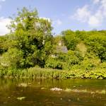 """The River Wye at Upperdale (29442-RDA)"" by rodjohnson"