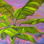 """Banana leaves at sunset"" by elayne"