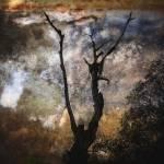 """*I Will Reach"" by GRphoto"
