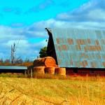 """Hay Harvest"" by maureenmarieltd"