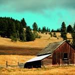 """Pastoral Ranch"" by maureenmarieltd"
