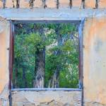"""Window"" by pierucciart"