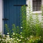 """""""Blue Door"""" by Inge-Johnsson"""