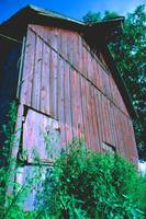 THE SIDE OF A BARN