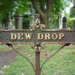 """Dew Drop sign"" by TheCalhounPictureShow"