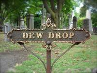 Dew Drop sign