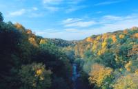 APPLE RIVER CANYON