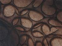 Silk Leather Wood 3