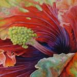 """""""In Bloom - Hibiscus"""" by DebraBryant"""