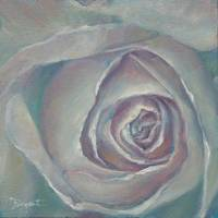 White Rose a la O'Keefe