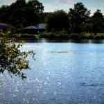 """""""Lake Shimmer"""" by flowerchild6482"""