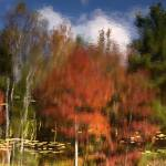 """Fall Reflection (Washington New Hampshire)"" by bavosiphotoart"