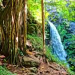 """""""Banyan Falls"""" by MauiViews"""