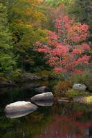 Fall Scene Antrim New Hampshire
