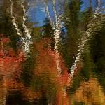 """Washington New Hampshire Fall Scene Abstract"" by bavosiphotoart"