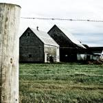 """""""Countrified Outland"""" by CCYPhotography"""
