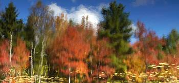 Abstract Fall Reflection New Hampshire