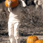 """PUMPKIN PICKING"" by tmckinleyphotography"