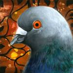 """Pigeon Portrait no. 2"" by joseygrosey"