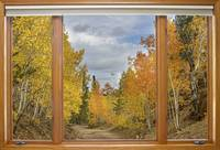 Burning Autumn Back Country Window View