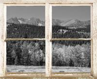 Rustic Looking Window Colorado Black and White Vie