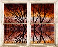 Sunset Tree Abstract Picture Window View
