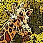 """""""Giraffe"""" by DennyPhil"""