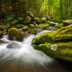 """Great Smoky Mountains Gatlinburg TN Roaring Fork"" by DAPhoto"