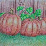 """pumpkins"" by thuraya"