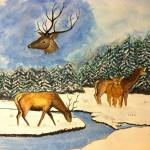 """""""Hangul : the Indian Stag"""" by AnkurDwivedi"""