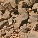 """Rocks_texture"" by TKMaurice"