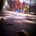 """random pic"" by jiteshmeenaphotography"