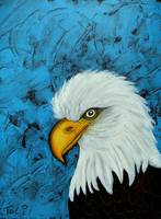 Sacred Bald Eagle