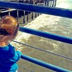 """Autism Creates:  Girl on a Pier"" by SVPhotoArt"